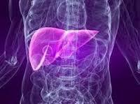 أمراض الكبد الدهنية