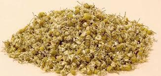 البابونج-فوائد البابونج-أكثر من 30 فائدة لنبات البابونج