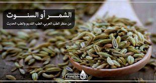 الشمر أو السنوت من منظر الطب العربي، الطب القديم والطب الحديث
