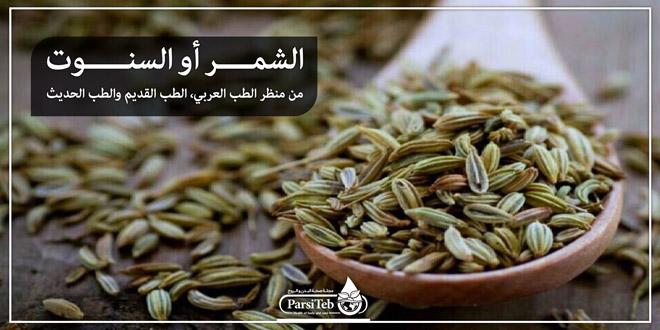 الشمر أو السنوت من منظر الطب العربي الطب القديم والطب الحديث بارسی طب