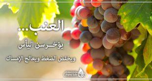 فوائد العنب-العنب يؤخر سن الشيخوخة ويخفض الضغط