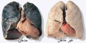 تأثير الكحول والتدخين على الرئة
