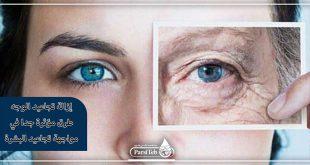 إزالة تجاعید الوجه طرق مؤثرة جدا في مواجهة تجاعید البشرة