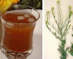 شربت الخوبة-15نصيحة غذائية للصيام في الفصول الحارة