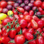 ماهي الأطعمة التي تخفف مضاعفات تلوث الجو على الجسم؟-الطماطم