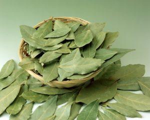 علاج رائحة العرق الكريهة بالأعشاب-ورق الآس