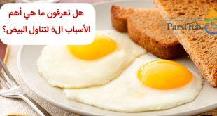 هل تعرفون ما هي أهم الأسباب ال۵ لتناول البيض؟