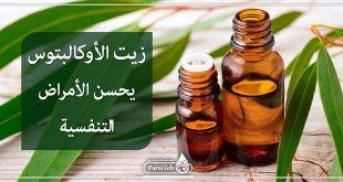 زيت الأوكالبتوس يحسن الأمراض التنفسية