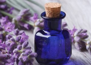 علاج الصداع النصفي بالأعشاب الطبية-زيت الخزامى العطري