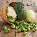 الملفوف من ضمن 10 مواد غذائية طاردة للسموم من الجسم