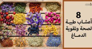 8 أعشاب طبية لصحة وتقوية الدماغ