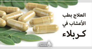 العلاج بطب الأعشاب في كربلاء