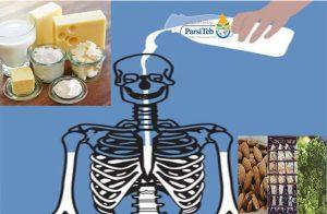الوقاية من تخلخل العظام-هشاشة العظام والعوامل المسببة المهمة في الإصابة بهشاشة العظام