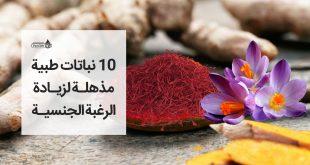 10 نباتات طبية لزيادة الرغبة الجنسية