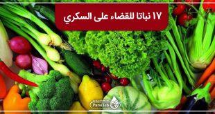 17 نباتا تركع السكري