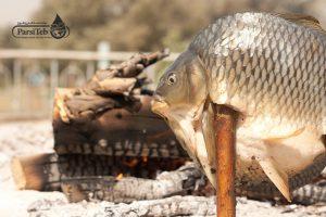 نسبة الاستهلاك اليومي للسمك