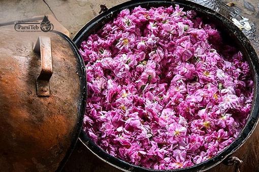فوائد ماء الورد في الطب الشعبي الإيراني